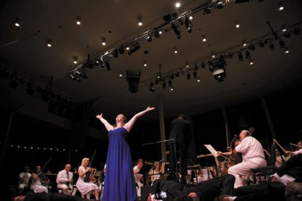 Chafetz leads CSO, Apprentice Artists in second water-themedcollaboration