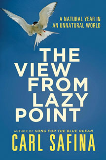 'Lazy Point' offers lessons in concern for our world