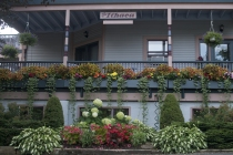 The Ithaca Garden on Waugh, the 2013 winner in the shade garden category.