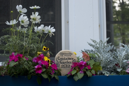 The 2013 Chautauqua In Bloom winner in the container garden category, located at 40 Warren. (Photos by Roxana Pop - File Photos)