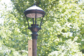 Property owners look to reform Institution street lighting, improving pedestriansafety
