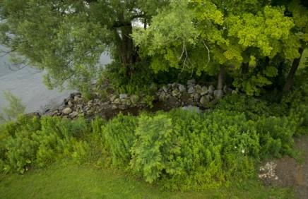 Natural shoreline helps Chautauqua Lakehealth