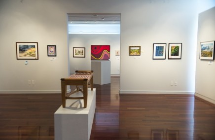 VACI Open Members Exhibition showcases mix of work