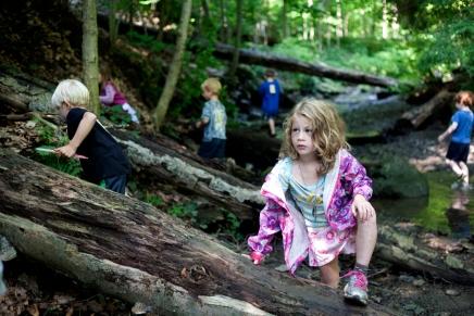 Children's School: The sighting of Thunder BridgeTroll