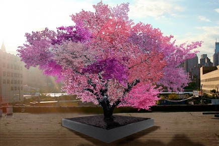 One man, one tree, 40 fruit: Artist Van Aken to present for  BTG on unusual project, implications for agriculture