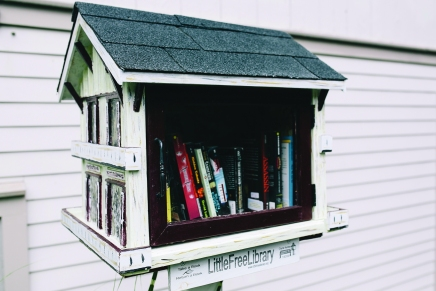 Little Free Libraries provide citizen-run book havens