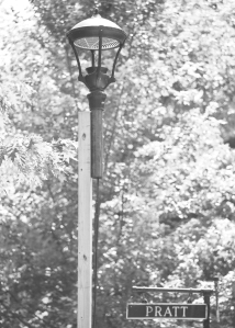 The Chautauqua Property Owners Association displayed this demonstration lamp at the corner of Vincent and Pratt during the 2012 season. (Lauren Rock | Staff Photographer)
